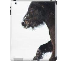 Ebony-miniature horse running in the snow iPad Case/Skin