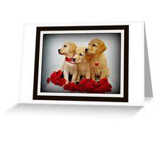 Trio of Roses Greeting Card