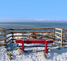 seasonal snow covered red bench sea view by morrbyte