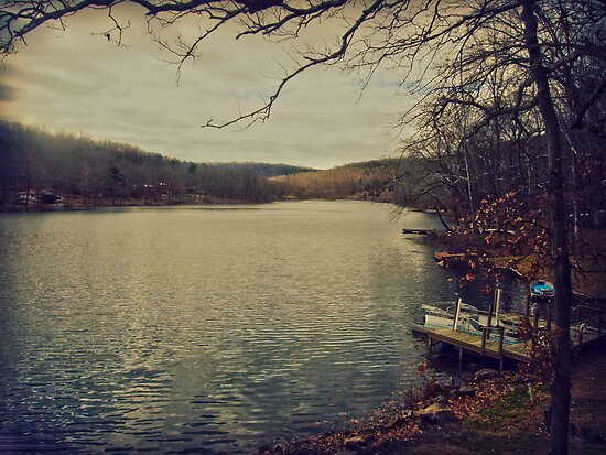 A Cold Day at the Lake by Susan S. Kline