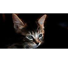 One`s Earzes Are Too Bigz For Ones Headz Photographic Print