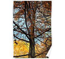 Autumn in Valsassina Poster