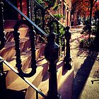 Waverly Place Long Shadows in the Fall by SylviaS