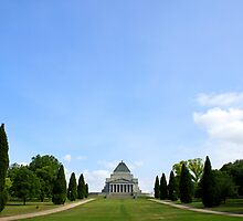 Shrine Of Remembrance  by David Toolan