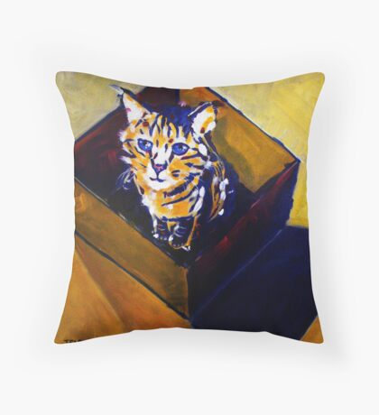 'Can't Think Out of the Box' Striped Tabby Cat  Throw Pillow
