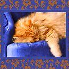 Kouch Kitty by Doreen Erhardt