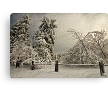 Heavy Laden Blizzard Canvas Print