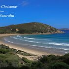 Merry Christmas . Norman Bay, Victoria by Pauline Tims