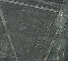 The Nazca Lines, No.2 by docnaus