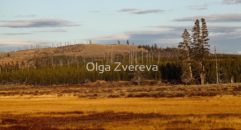 Autumn in Yellowstone by Olga Zvereva