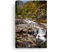 ~ the mountain stream ~ Canvas Print