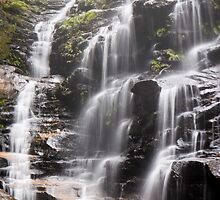 Sylvia Falls, Blue Mountains by Adriana Glackin