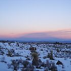 Snow In The High Desert by Socrates & Angela Hernandez