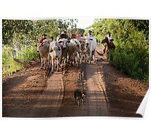 Pantanal Herding Poster