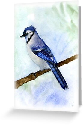 blue jay on a branch handmade aquarelle by Veera Pfaffli