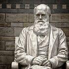 Charles Darwin by hinomaru