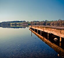 Pickmere Lake by Elowrey