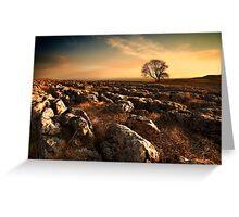 Malham Rakes Tree at Sunset Greeting Card