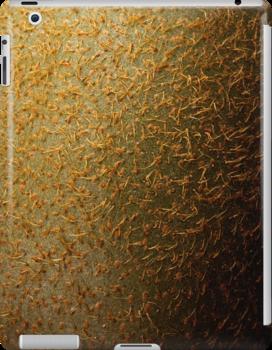 Kiwi iPad Case by M. van Oostrum