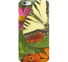 Yellow Tiger Swallowtail Butterfly Among Colorful Flowers iPhone Case/Skin