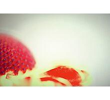 power flower power Photographic Print