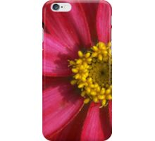 Red and Pink Zinnia iPhone Case/Skin