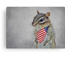 Patriotic Chippy Canvas Print