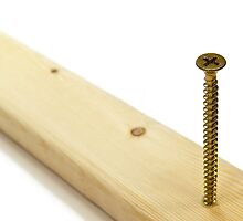Phillips screw in wood. by FER737NG