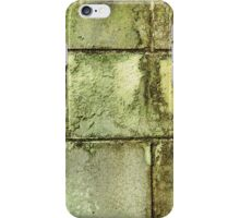 Leaky Basement iPhone Case/Skin