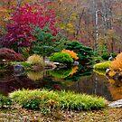 Japanese Garden November 2012 by Phillip S. Vullo Jr.