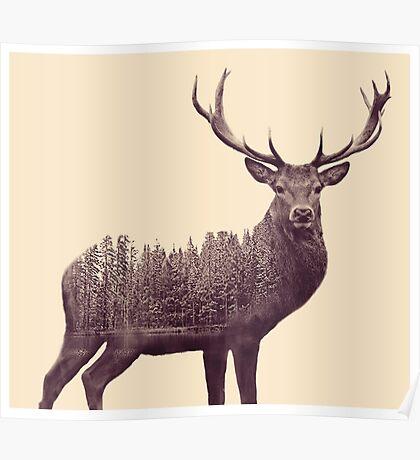 Double Exposure Deer  Poster