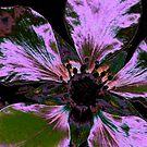 I-phone case..irridesent purple flower by MaeBelle
