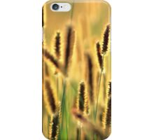 Grass Going to Seed iPhone Case/Skin