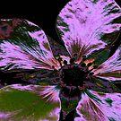 I-pad case, purple Irridesent Flower by MaeBelle