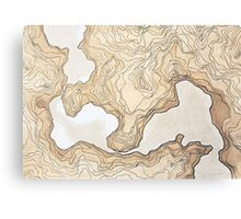 maps from a inexistent world  Canvas Print