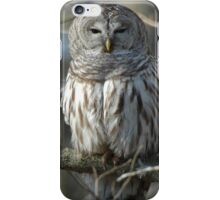 Barred Owl iPhone Case/Skin