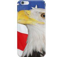 American Symbols iPhone Case/Skin