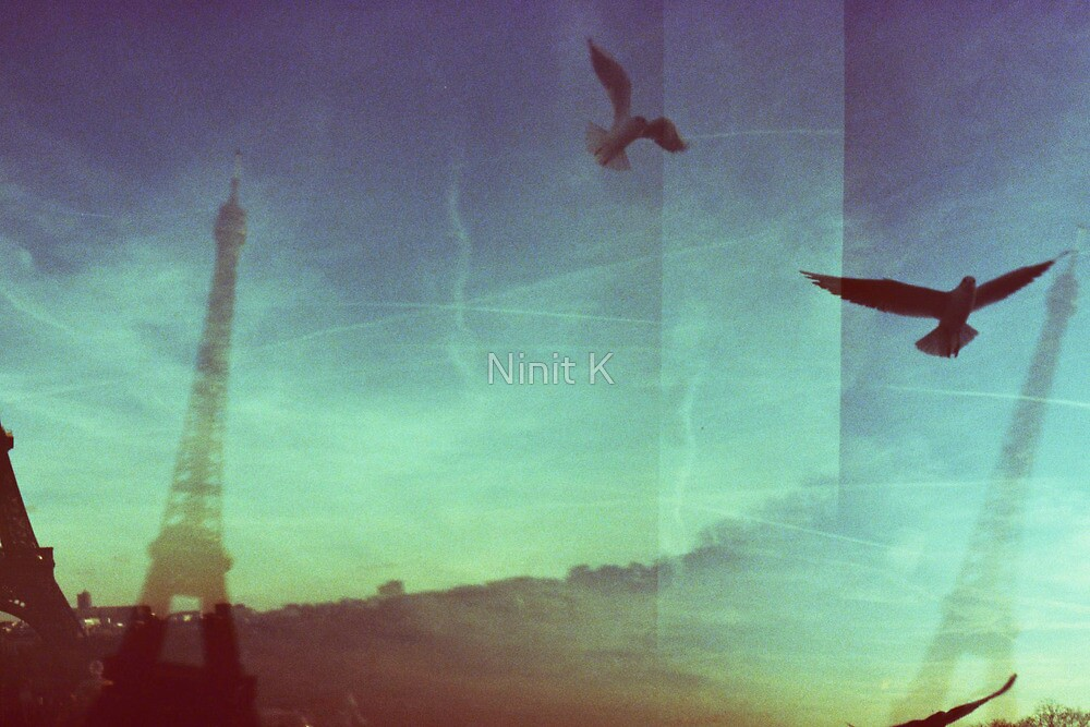 Birds and Eiffel Towers by Ninit K