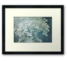 Veiled Beauty Framed Print
