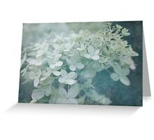 Veiled Beauty Greeting Card