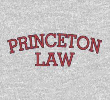 Princeton Law by digerati