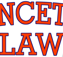 Princeton Law Sticker