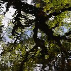 Summer Reflections in the River Duror by cuilcreations