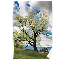 tree on the sky Poster