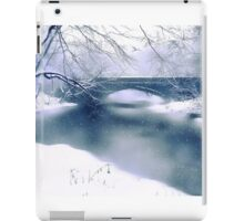 Winter Haiku iPad Case/Skin