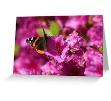 Pink Flutter Greeting Card