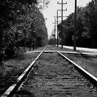Black and White Railroad Tracks by Michael  Kemp