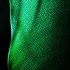 Green Two by A. Duncan