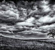 Big Sky by kwreaves