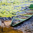 Sunk boat  by Cebas